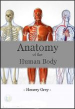 Anatomy of the Human Body – Henry Gray