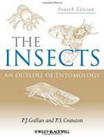 The Insects, An Outline of Entomology 3rd Ed. – P. Gullan (Blackwell, 2005)